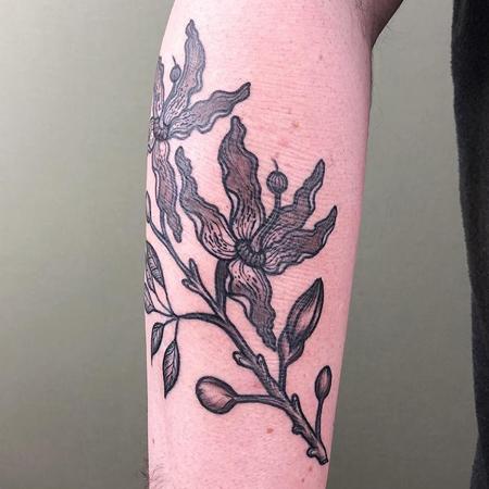 Tatuering av Kai Knowfolly på underarm. En slingrig passionsblomma i svart med mjuka skuggor.