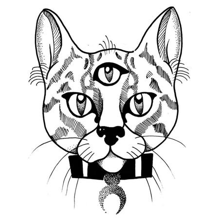 Tatueringsmotiv i blackwork stil av tatuerare Bahicho. En tigerrandig treögd katt med månhalsband stirrar tillbaks på oss.