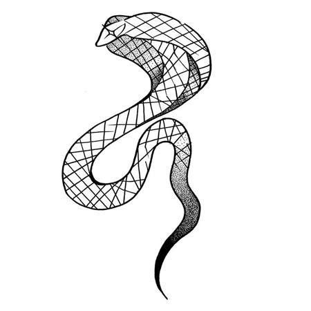 Tatueringsmotiv i blackworkstil av tatuerare Bahicho. En kobra med stjärnögon och fina streck över hela kroppen.