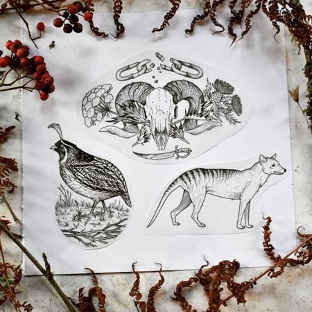Flash för tatuering av queer tatuerare Alex , en räv, fågel och getskalle i gravyr stil.